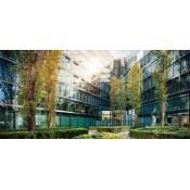 綠建築認證及好處