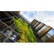 綠建築範疇