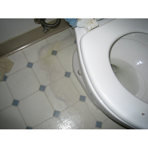樓下住戶投訴我的廁所滲水,怎樣辦?